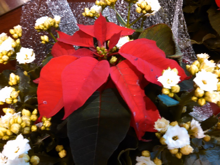 Deschutes County 4 Wheelers | Redmond's Christmas Parade